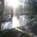 la rivière aime la lumière