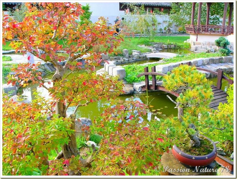 Balade le jardin yili passion nature 78 for Jardin a visiter 78