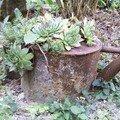 Planté...là !...septembre 06