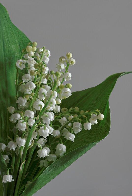 bouquet-de-muguet-roudouz
