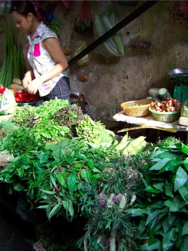 Les herbes aromatiques base de la cuisine vietnamienne photo de manger au vietnam carnet de - Herbes aromatiques cuisine ...