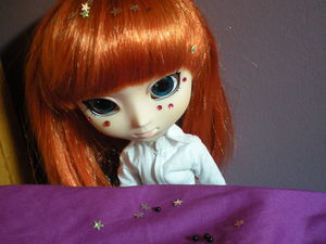 Mes_pullips_004