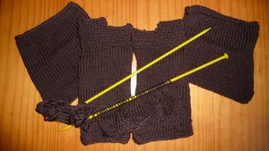 Tricot_encoursC