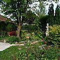 226 - automne au jardin
