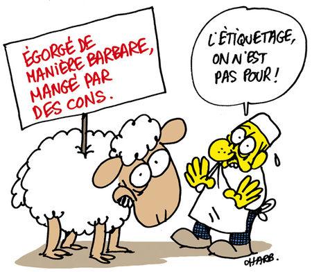 967_Puce_OABA_Charb