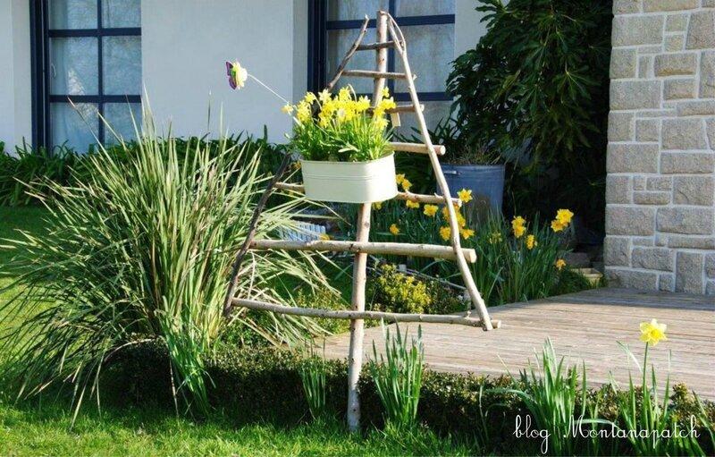 dans le jardin de La Fée Morgane sur blog montanapatch (6)