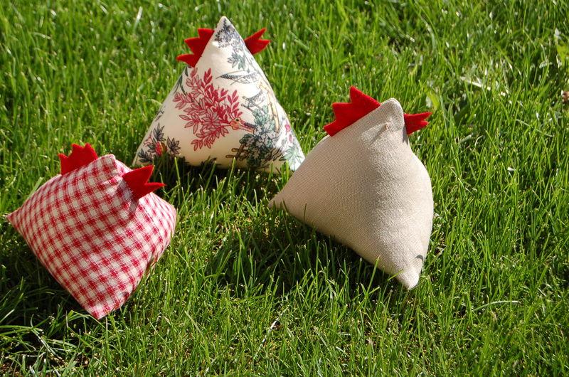 poulettes de dakar aux chemins de saint jacques. Black Bedroom Furniture Sets. Home Design Ideas