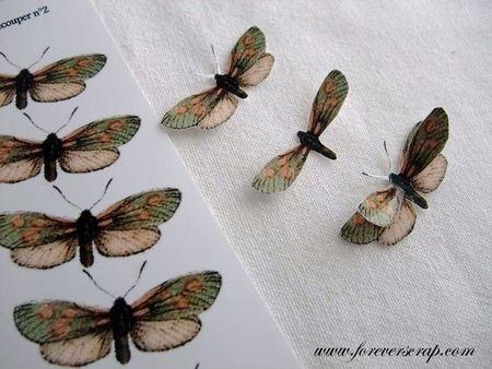 papillons_mini