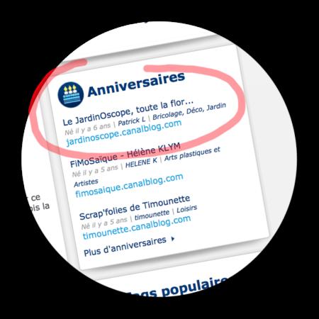 Anniversaire-du-blog