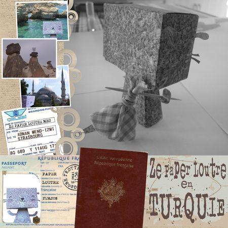 paper_loutre_T1
