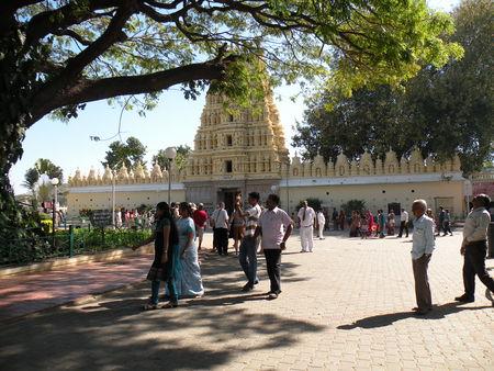 Mysore___Calicut___arriv_e_Cochin_399