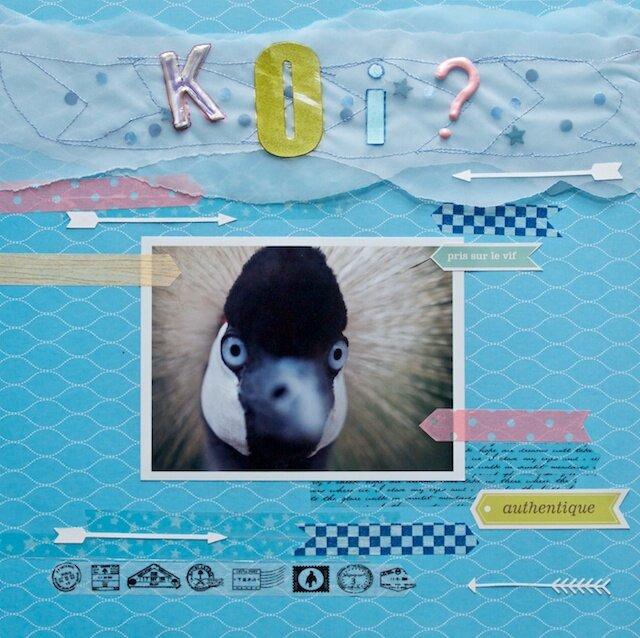 2013 11 oiseau 13813