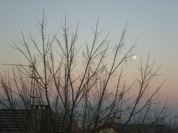 Lever du jour - 12 Janvier 2012