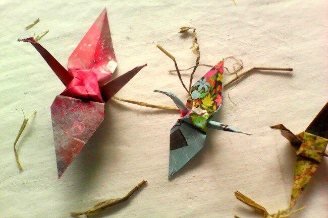 origami grue 1 avril 2016