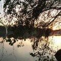 coucher de soleil sur l'étang_11
