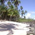 Voyage en Guyane...