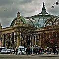 Vue sur le Grand Palais.
