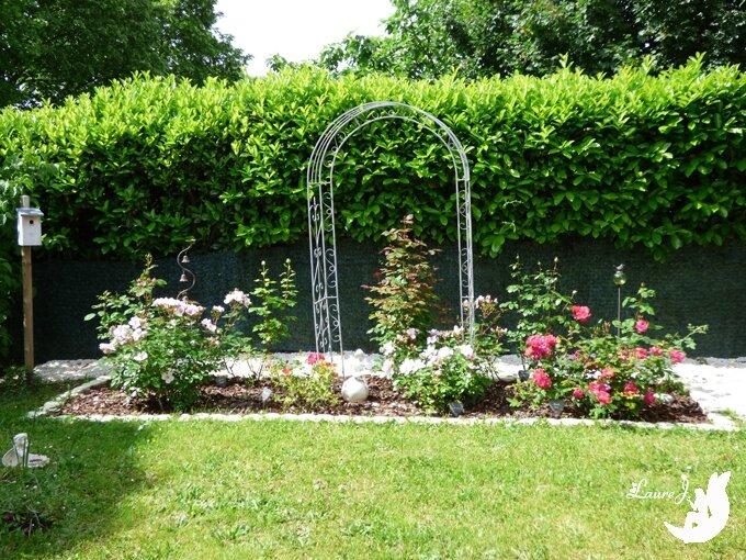 les rosiers du jardin le grand massif mon jardin du bonheur. Black Bedroom Furniture Sets. Home Design Ideas