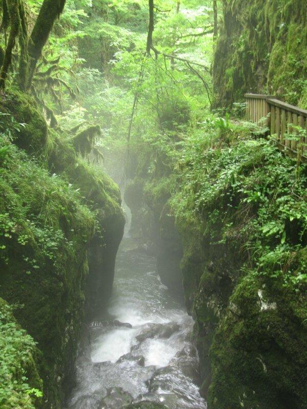 Gorges de l'Abîme - Chemin
