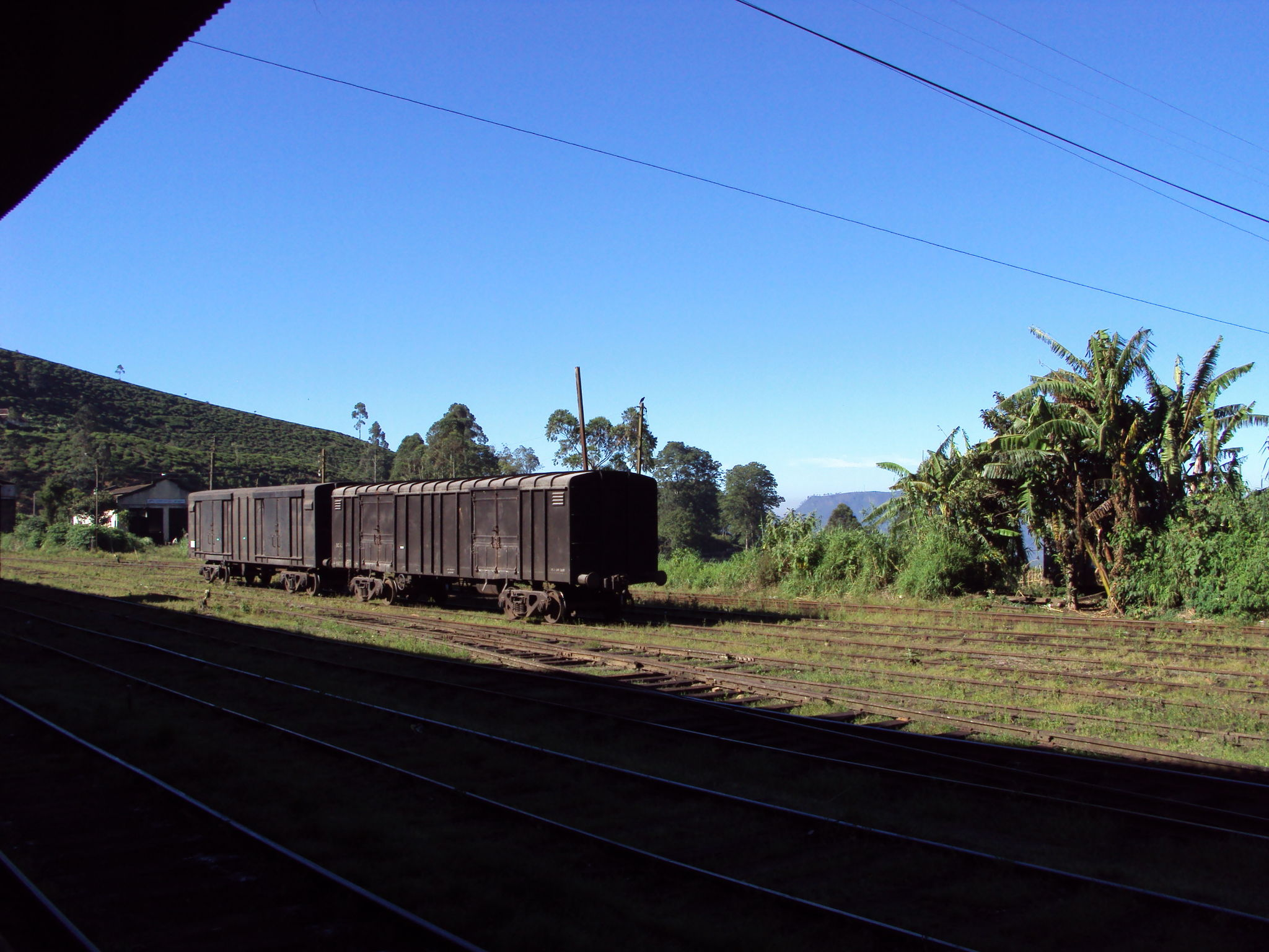 Nanu Oya (Sri Lanka) wagons