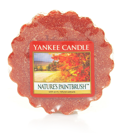 natures-paintbrush-yankee-candle-wax-tart