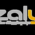 Suspension service azalys
