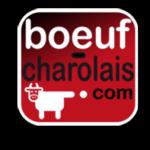 boeuf_charolais