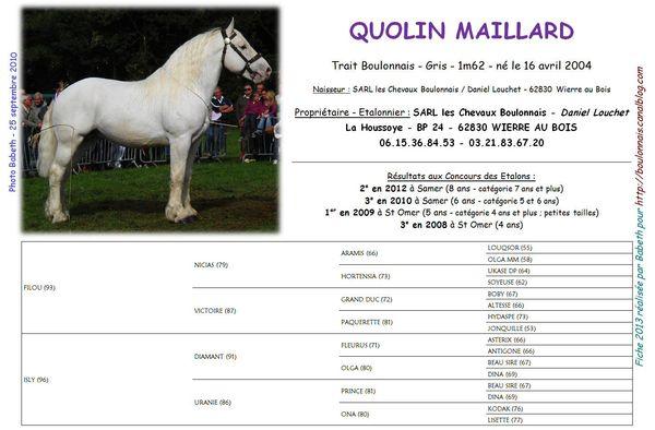 Quolin_Maillard