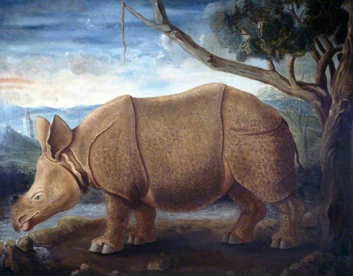RHINOCEROS TOILE DE JAMES PARSONS