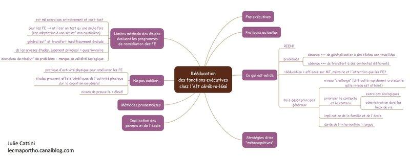 rééducation des fns executives chez l'eft cérébro-lésé 2