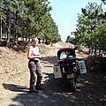 bulgarie - pause dejeuner dans la pinède