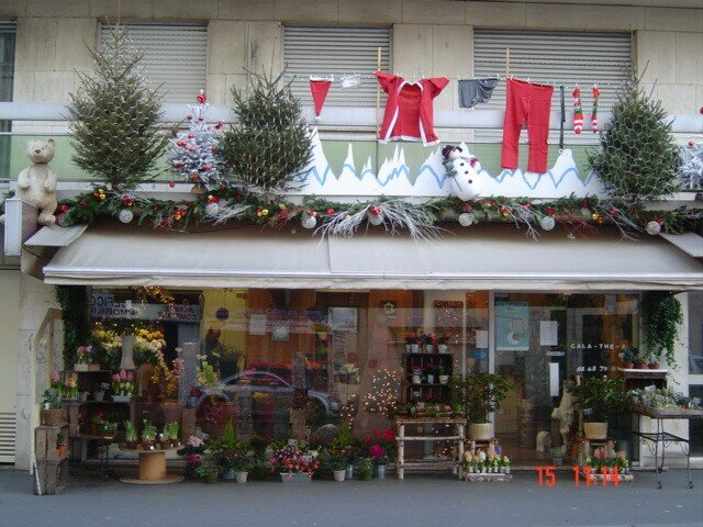Cala th a - Decoration vitrine de noel fleuriste ...