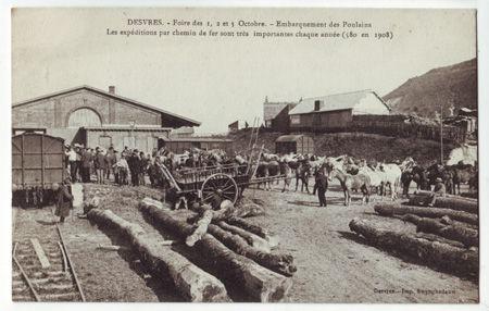 62 - DESVRES - Foire d'octobre - Emarquement des poulains
