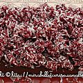 Fondant chocolat-coco, crumble cranberries coco gingembre