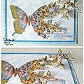 Variation..... de papillons !