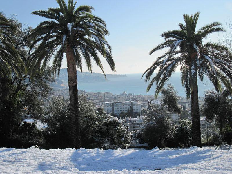 Photos de nice sous la neige drailles dou cantoun for Garage les palmiers nice