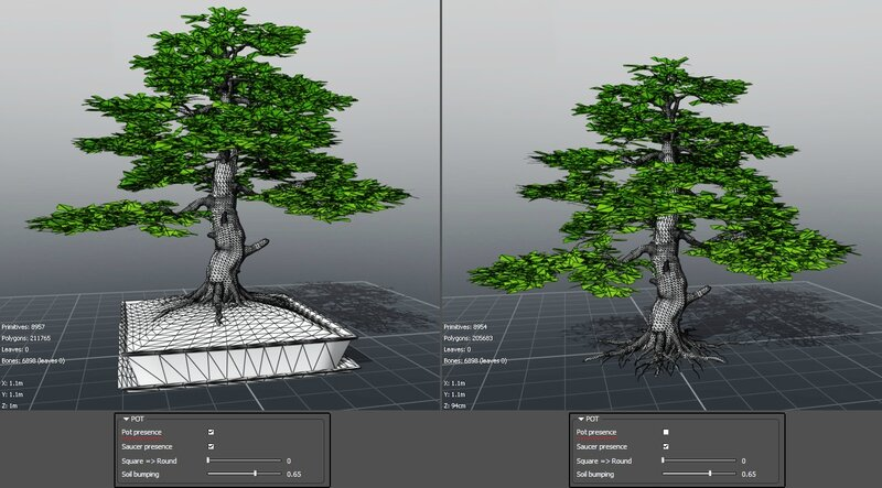 10 Fagus sylvatica bonzaï beech tree 3d plant model factory 3ds cad max fbx obj screen shot 2