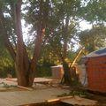 travaux plancher terrasse