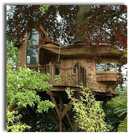 tree_house3