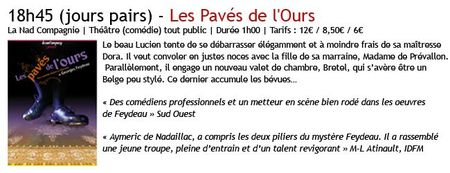 Pavés copie