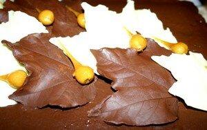 feuilles_chocolat