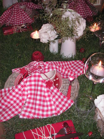 table_picnic_048