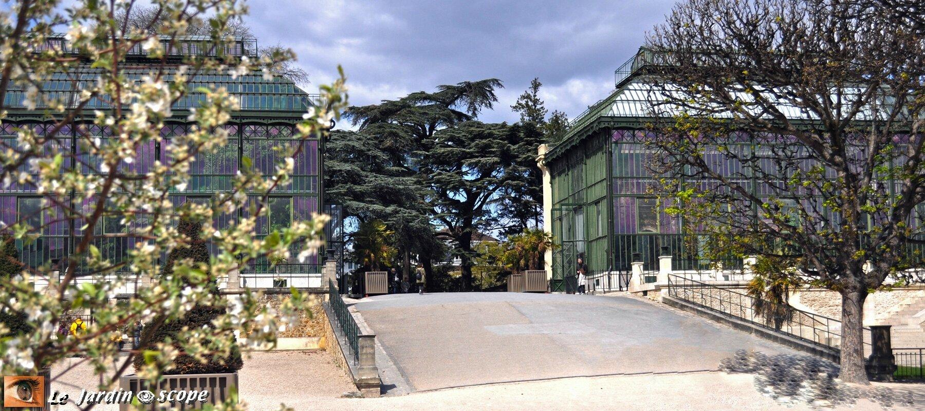 Les grandes serres du jardin des plantes de paris le - Serres jardin des plantes ...