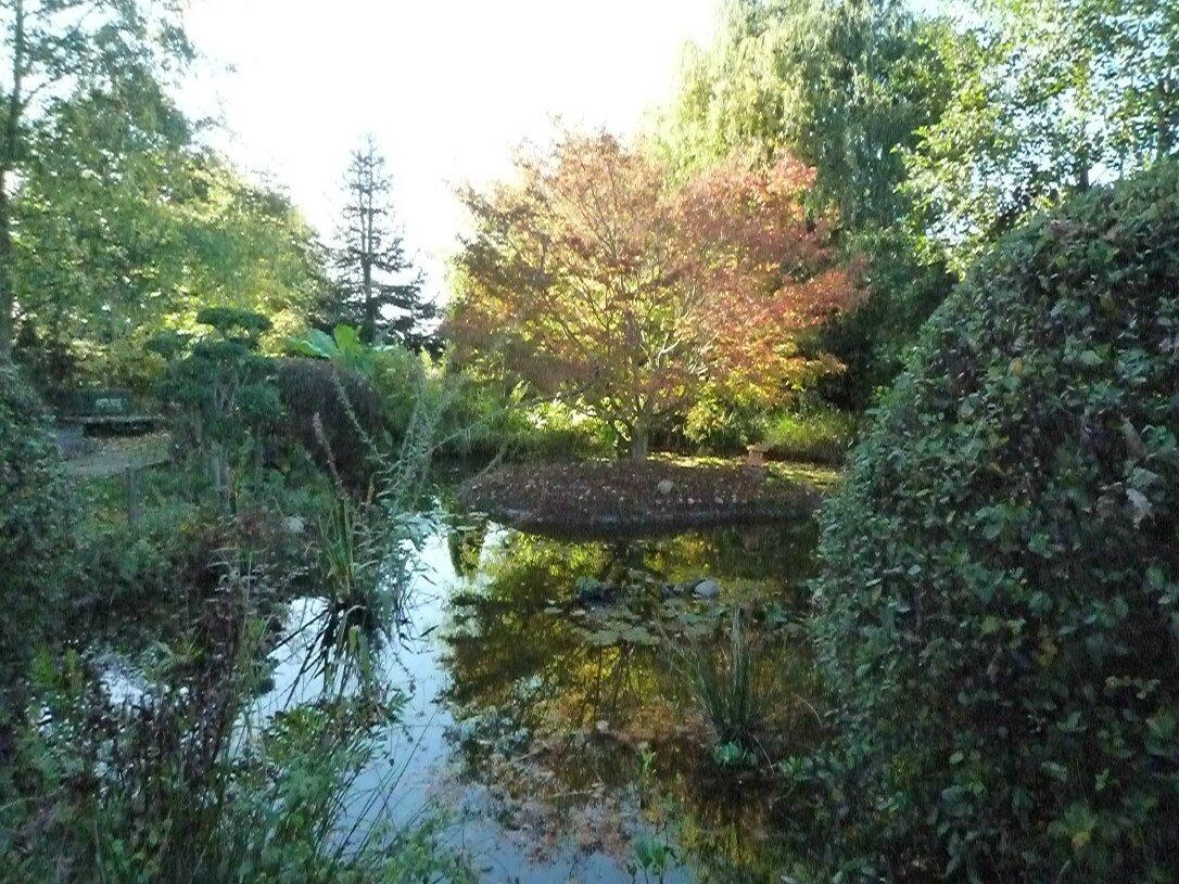 L 39 eau esprit vivant du jardin rouge cabane for Le jardin vivant