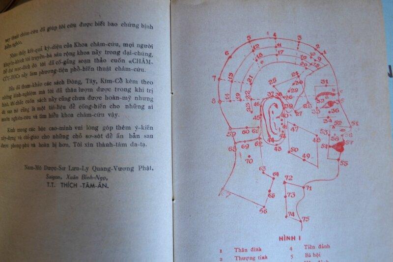 Acupuncture, Cẩm Nang Thực Hành Châm Cứu, 针灸大成, LIRES VIETNAMIEN,