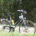 vélo sud Estonie