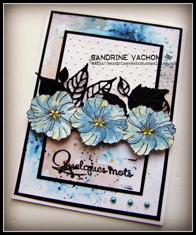 Sandrine VACHON défi 505 du 12