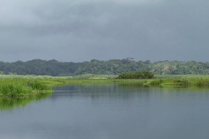 Marais de Kaw