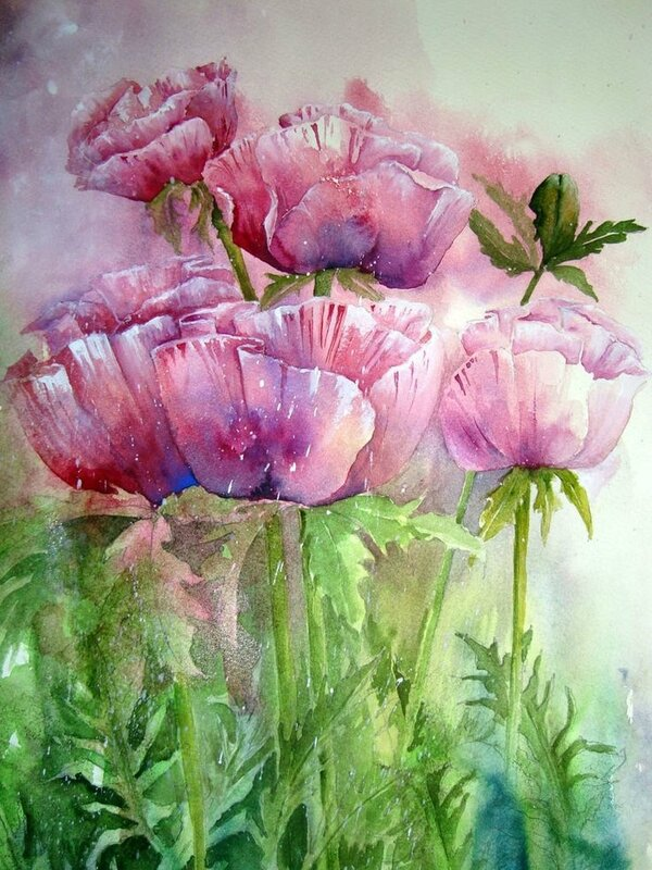 fd07aa85540a345b2bc0cca18ee23139--flower-paintings-watercolours