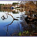 Lac Soustons 0703155